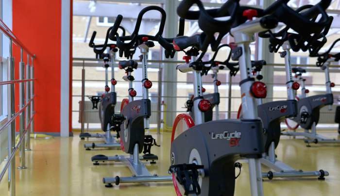 gym training program